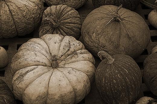 Greenhouse Gourds, Bantam, CT 2013