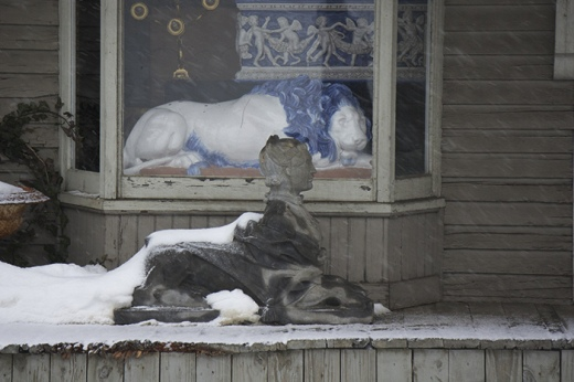 Lion in Winter, Woodbury, CT