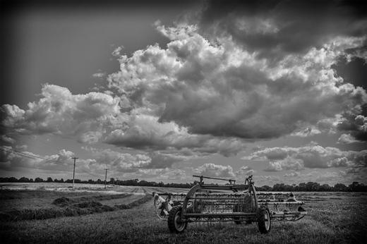 farmview-03