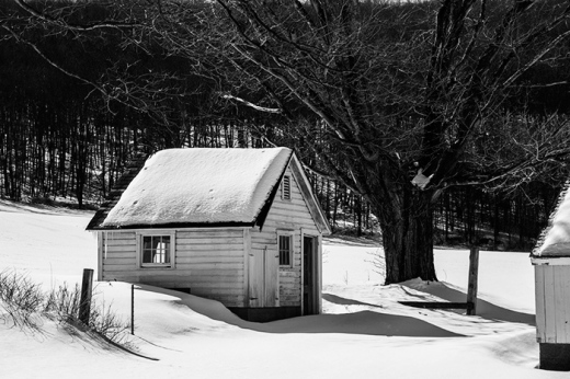 farm-winter