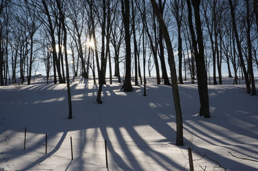 snow-shadows-2