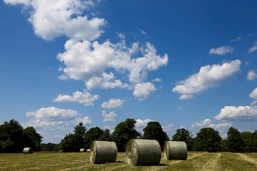 round-bales