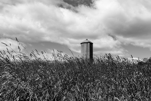 silo-in-high-grass