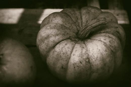 pumpkin-effect