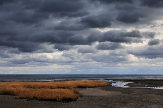 windy-day-southport-2